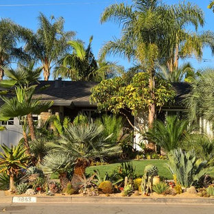 Photo Of A Tropical Landscaping.