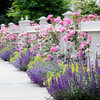How to Bring Your Front Fence Back to Life