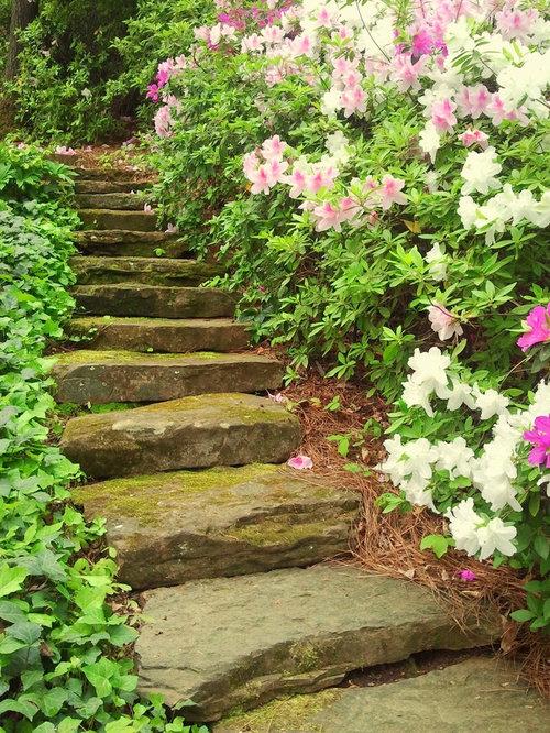 Garden design elements landscape for Garden design elements