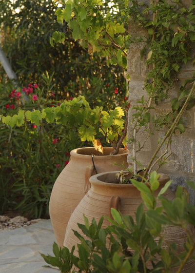 Mediterran Garten by Carolyn Chadwick