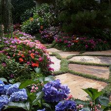 Traditional Landscape by Garden Design