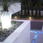 Modern Backyard Modern Landscape Miami By Jc