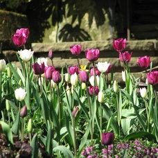 Traditional Landscape Garden Designs Dublin