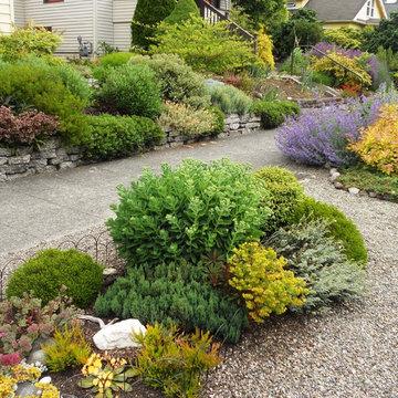 Garden for a Pisces
