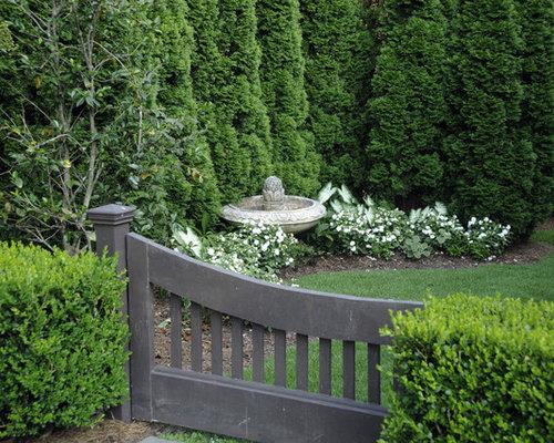 Arborvitae Home Design Ideas, Pictures, Remodel And Decor