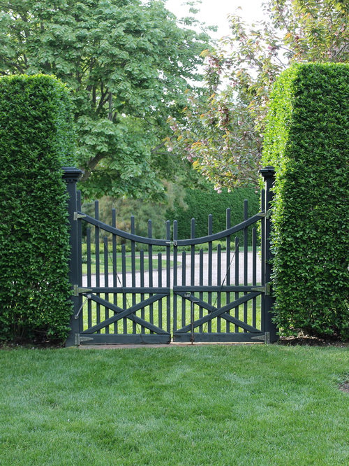 Privet Hedge Gate Ideas Pictures Remodel And Decor