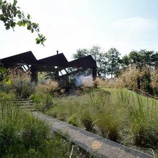 Inspiration pour un jardin arrière nordique avec une entrée ou une allée de jardin et du gravier.