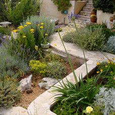 Mediterranean Landscape Garden in shades of blue and yellow
