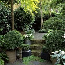 Landscape Garden Inspiration