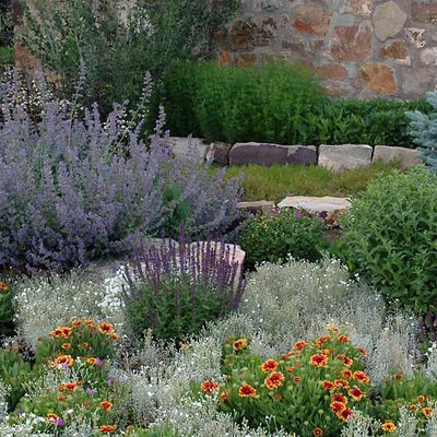 This is an example of a mid-sized traditional hillside stone landscaping in San Francisco.