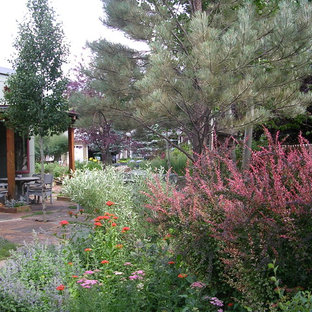 Design ideas for a mid-sized eclectic drought-tolerant and partial sun front yard stone landscaping in Denver for fall.