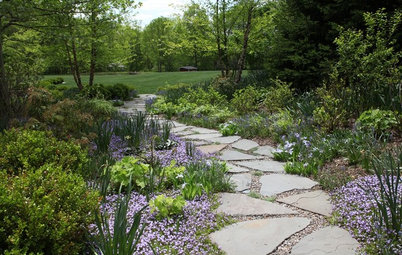 6 Projects to Create Beautiful, Water-Saving Outdoor Spaces