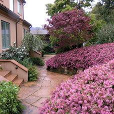 Traditional Landscape by Derviss Design