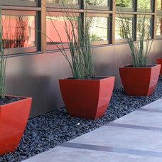 Contemporary Landscape by Derviss Design