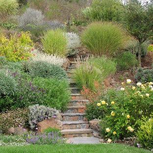 Immagine di un giardino chic con un ingresso o sentiero, un pendio, una collina o una riva e pavimentazioni in pietra naturale