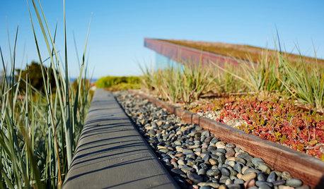 8 Alternative Roof Materials to Buck the Mainstream