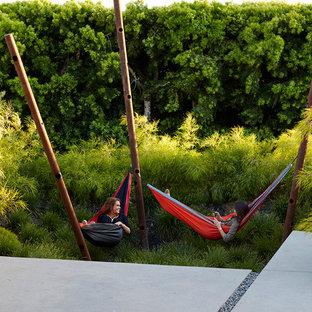 Выдающиеся фото от архитекторов и дизайнеров интерьера: сад в современном стиле