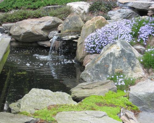 Garden pond waterfall houzz for Koi pool water gardens thornton