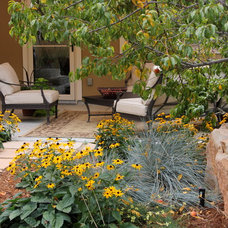 Eclectic Landscape by Sandy Brown, ASLA