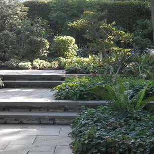 Design ideas for a modern landscaping in Seattle.