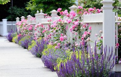 10 Tips to Start a Garden — Can-Do Ideas for Beginners
