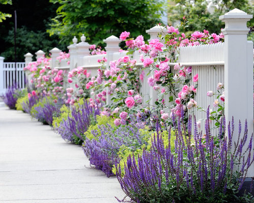 Rose Garden Houzz