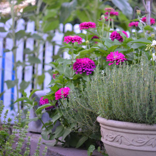 Design ideas for an eclectic landscaping in Philadelphia.