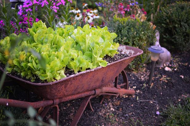 Eclectic Garden by Amy Renea