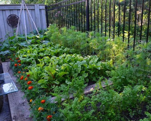 Garden Ideas Edmonton edmonton landscaping with a vegetable garden ideas & design photos