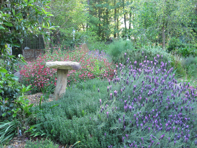 Contemporary Landscape by Gardening with Confidence®