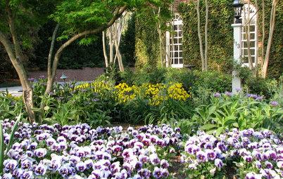 Southeast Gardener's October Checklist