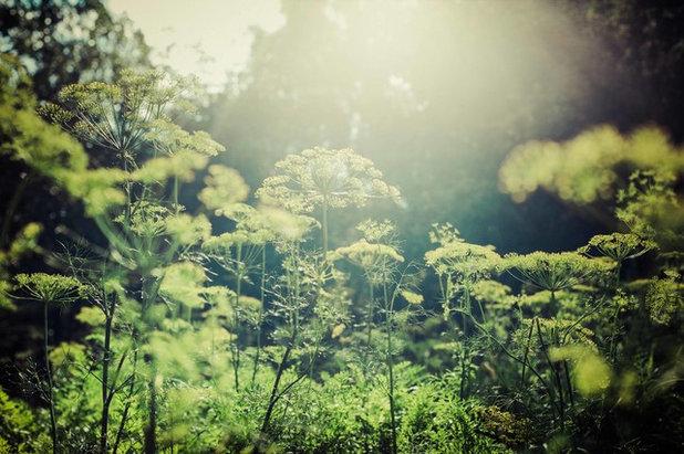 Landstil Have by Art Home Garden