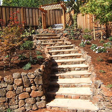 Traditional Landscape by Lazar Landscape Design and Construction
