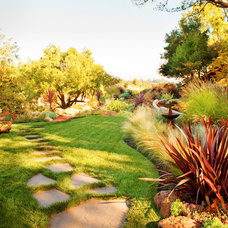 Contemporary Landscape by Samscaping Landscape Design and Build