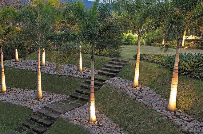 Tropical Landscape by Urban Design South