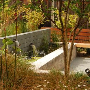 Diseño de jardín francés, moderno, de tamaño medio, en patio trasero, con fuente