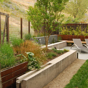 This is an example of a mid-sized modern backyard formal garden in San Francisco with a water feature.