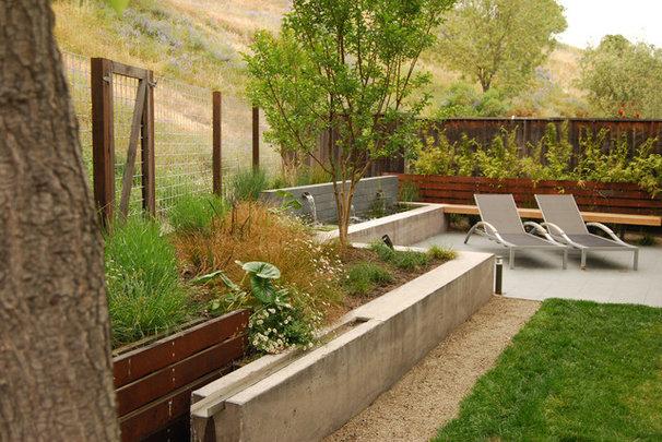 Modern Landscape by Envision Landscape Studio