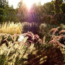 Contemporary Landscape by Change of Seasons - Gary Kernick