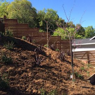 Design ideas for a large transitional full sun backyard gravel landscaping in San Francisco.