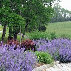 Traditional Landscape by Susan Cohan, APLD