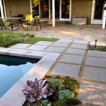 Geometry Overgrown: a Modern Pool & Landscape