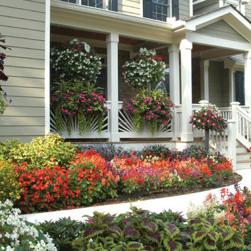 Georgia House Front Yard Makeover