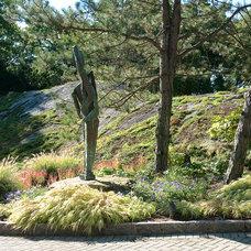 Modern Landscape by Westover Landscape Design, Inc.