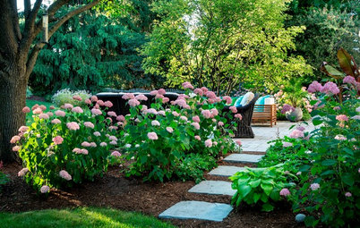 10 Questions to Ask a Landscape Designer