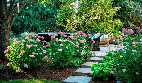 Pregunta al experto: Cómo diseñar un jardín bonito y práctico