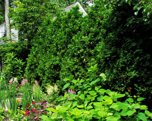 Glencoe Classic English Garden For Flowers and Vegetables