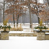5 Important Winter Tasks to Keep Container Gardens in Shape