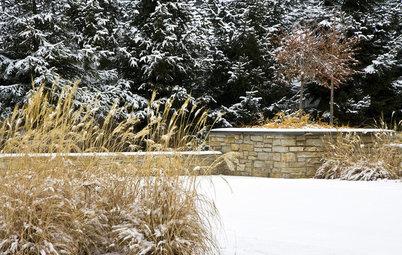 Conseils de pro pour un jardin coloré... même en hiver !