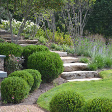Traditional Landscape by quinn craughwell landscape architects, pllc